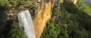 Visit the Southern Highlands Fitzroy Falls